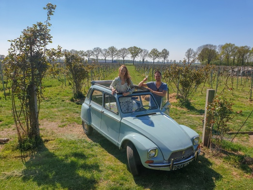 Lovely local lokale wijngaard